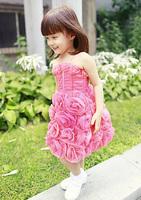 Girls autumn clothing flower girl dress princess dress one-piece dress tulle dress child evening dress