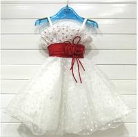 2014 female child princess dress one-piece dress flower girl dress skirt wedding dress
