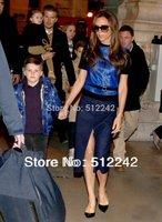2014 Spring Autumn Winter New fashion Women 2 pcs shirt+skirt Brief Shiny blue Set Suit Victoria Beckham Dress Free Shipping hxh