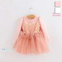 2013 children's clothing autumn winter female child plus velvet princess laciness one-piece dress long-sleeve dress tulle bv71a9