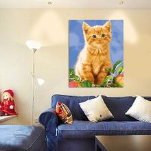 wholesale picture cat