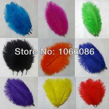 popular ostrich drabs