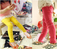 girls cotton candy color pants girl leggings 5 pcs/lot,1153