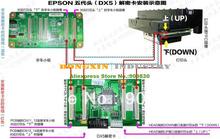 Impressora de cartão DX5 cabeça descriptografia para todos os modelos Epson de grande formato impressora de frete grátis(China (Mainland))