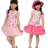 2014 girl dress summer girl clothes 100% cotton children outerwear kids dresses girls one-piece dress princess dress