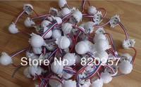 DHL EMS Free shipping 100pcs/lot 20pcs/String DC12V WS2811 30mm Diffused Full Color 3pcs 5050 SMD Programmable pixel Led Module