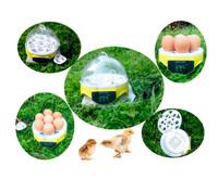 Family Mini Incubator 7 Egg Capacity  Digital Chicken Duck Bird Hatch 220V-240V Guidebook Hatching Tool