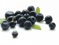1Packs 100% Nature Acai Berry  Extract Capsule 500mg x 100pcs
