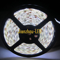 5M 5050 White Waterproof LED Strip 300 Leds For Christmas 12V & Mini Controller