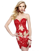 2013 New Fashion Sweetheart Applique Lace Haute Couture Short Sheath Cocktail Party Dresses For Girl N198