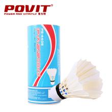 badminton supplies promotion