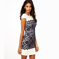 Free Shipping! gothic punk scallop lace cover stitching back zipper round collar dress size dress with short sleeves