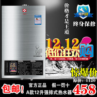 Gas water heater 8 10 12 strong emission-type chimney lpg