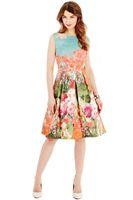 High Quality Plus Size Women's Big Hem Sleeveless Print Flower Sexy Bodycon Dresses Back V A-line Famous Brand romantic Vestidos