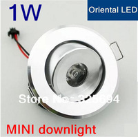5pcs/lot Free shipping 1W Led Ceiling lamp Light Warm white/ white 85-265V Silver Shell Downlight 110LM CE ROHS 2years Warranty