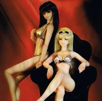 1/3 large Bjd doll  full set sd doll female biarticular doll wood bjd doll