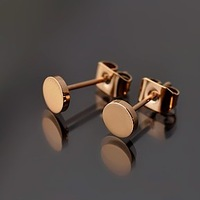 Beautiful star high quality 18k small golden nuts titanium rose gold brief elegant stud earring c female