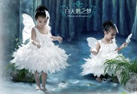 new 2014 hot-selling dance clothes Christmas little angel clothes swan lake feather dress / butterfly flower princess dress