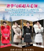 2013 thickening down coat Women slim ice cream