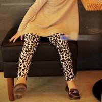 2014 Retail 1 pcs spring and autumn children pants kids leopard-print leggings of the girls ZM482