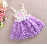 2014 Newest Baby-girls rosettes slip lace princess sleeveless tutu dress