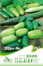 popular cucumber