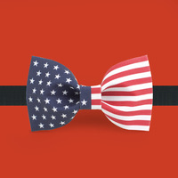 2014 New Arrive Fashion bowties Cloth fashion bow tie bow groom formal wear bow tie american flag  Free Shipping