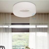Modern brief fashion child annular acrylic ceiling light lamps