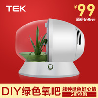 Ranunculaceae tek worsley air purifier household formaldehyde pm2.5 negative ion generator oxygen bar aerobic bonsai