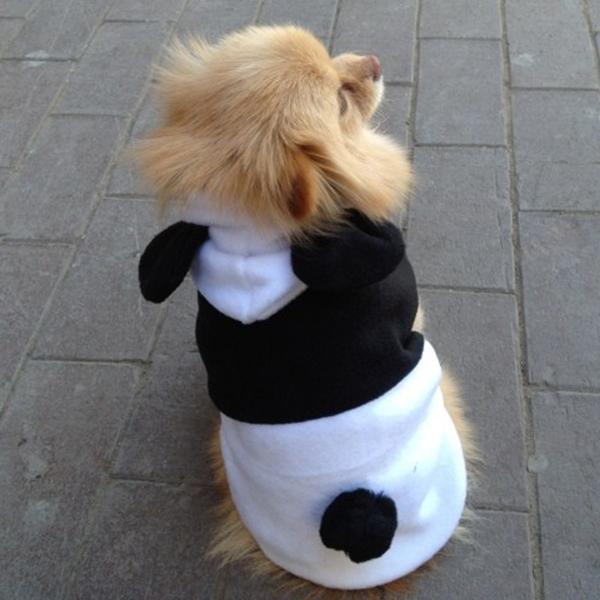 Одежда для собак Yrd