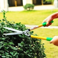 Gardening tools flower long special scissors big tree big flowers asperata cut