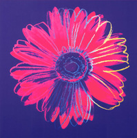 Andy Warhol  - Daisy Oil Painting on canvas