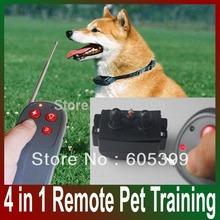 pet trainer collar price