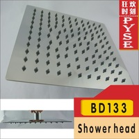 Free shipping BD133 SS 304 stainless steel rain shower head