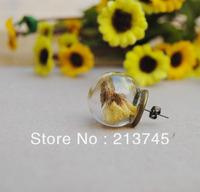 Sale Free Ship!20mm(12mm opening)  Glass  globe&Earring Base Set Glass Bottle Vials Pendant DIY Earring  Findings