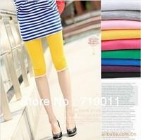 Free shipping Cotton Lace Candy Color Women Pants Female Elastic Comfortable Capris