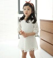 Spring children girls dress ,kids princess dress for party, baby girls lace dress ,sleeve dress children 2014 for 2-10years