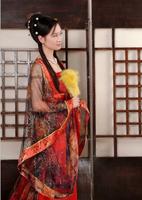 Costume fairy female tang suit hanfu princess costumes women's costume