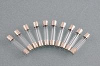 10PCS Fast Blow Glass Fuses 1 A 250V 6mm x 30mm  [EFB3]