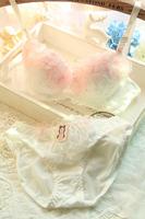 new hot-selling embroidery lace sexy gauze push up bra underwear set rose flower women bra briefs set fashion