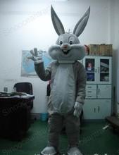 fancy dress rabbit price