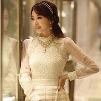 Women's Spring Autumn Slim Elegant Pullover Embroidery Lace Collar Long-sleeve Shirt Basic Blouse Chiffon Shirt