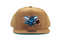 Free shipping Mitchell and ness snapback  baseball cap