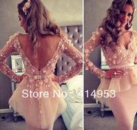 New Arrival 2014 Sexy V-neck Bowknot Sash Flower Sheath Long Sleeves Peplum Blush Pink Lace Myriam Fares Celebrity Dresses