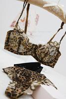 Sexy transparent women's ultra-thin bra set lace temptation leopard print thong set underwear Free shipping
