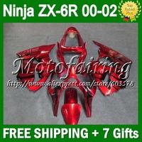 7gifts For KAWASAKI ZX6R NINJA 00 01 02  black flames CL7108 ZX636 ZX-636 ZX-6R ZX 6R 636 2000 2001 2002 black red Fairings