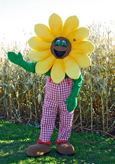 OISK Edmonton Farmers Market mascot costumes performance props apparel halloween birthday Fancy dress(China (Mainland))