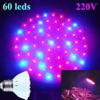 AC220V 3W  Red and Blue 60 LEDs Hydroponics Light LED Plant Flower Grow Growth Hydroponics Light Bulb Lamp GZMDS42