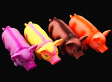 cheap rubber pig toy