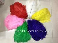 Wholesale 100pcs/lot Bird Feather 18-20 inch 45-50cm Ostrich  sulg   plume  veer  pena plumo pluma nepo   for Wedding